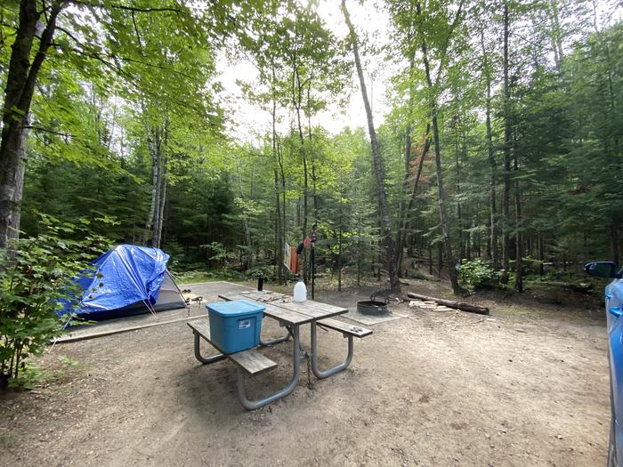 Tent site, picnic table, fire ring and lantern pole.