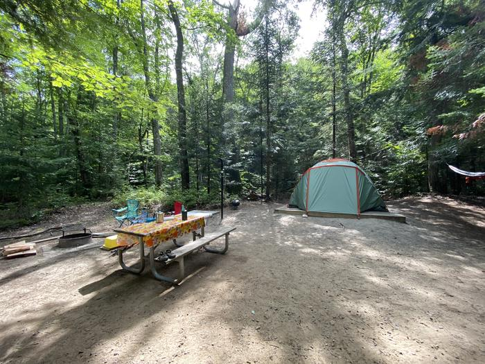 Tent pad,picnic table, fire ring and lantern pole.