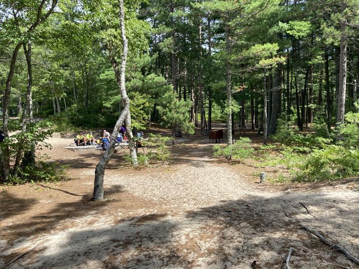 Beaver Loop areaBeaver Creek Campground