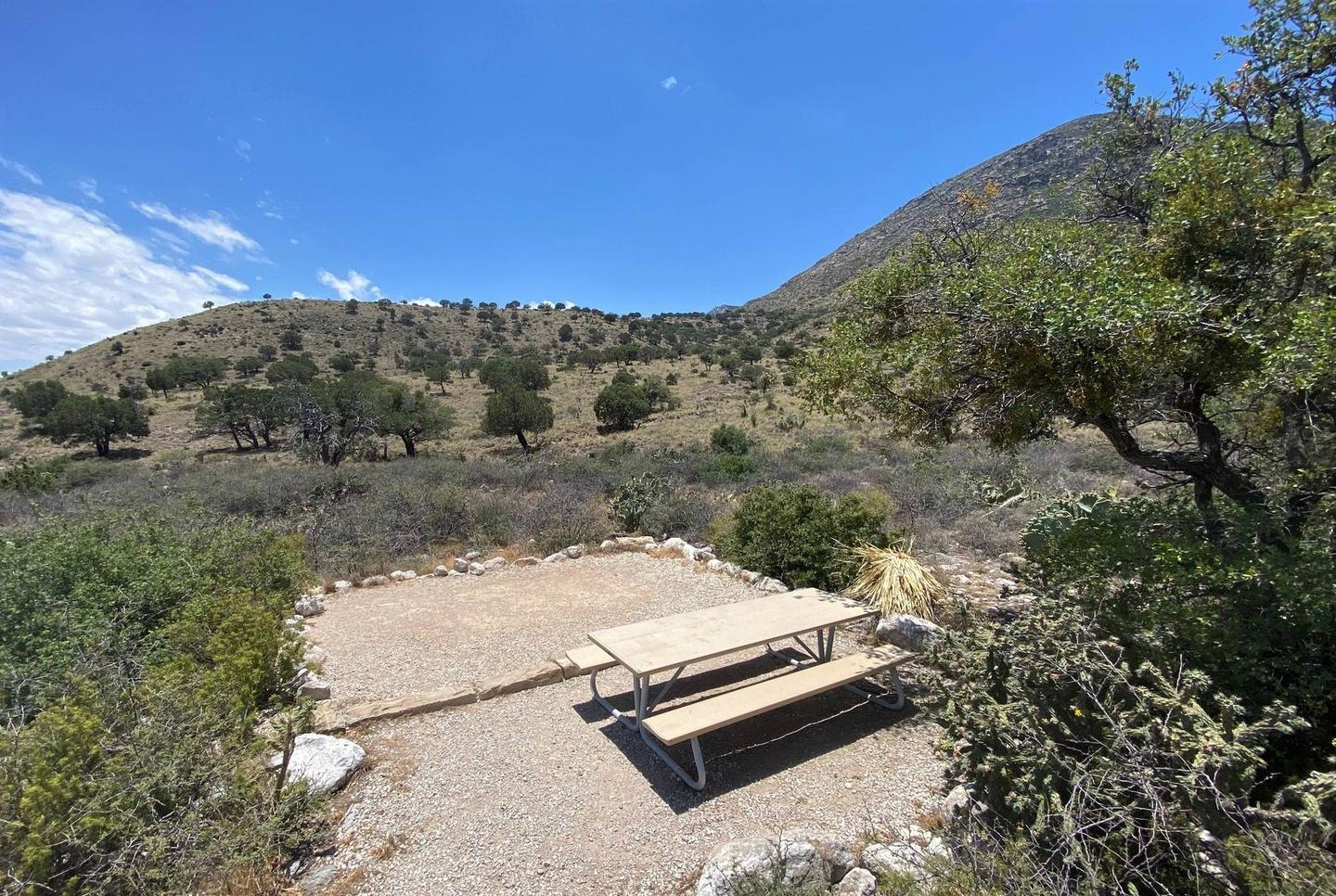 Elevated view of tent campsite number 7 with mountains in background.  Desert vegetation surrounds the site.Elevated view of tent campsite number 7 with mountains in background.