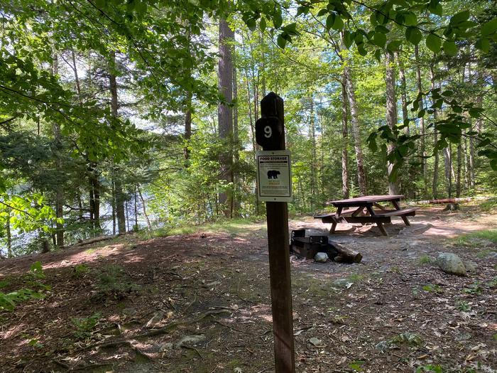 Campsite 9Site 9