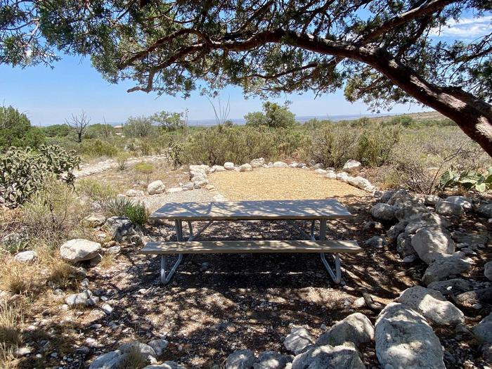 Tent campsite number 8 with desert vegetation surrounding site.