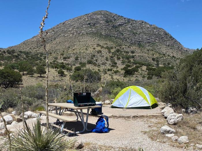 Tent campsite number nine, displaying a two-person size tent on the tent pad.  Mountain landscape in background, NW view from site.