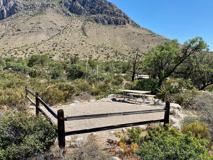 Campsite number 11, surrounded by desert vegetation.
