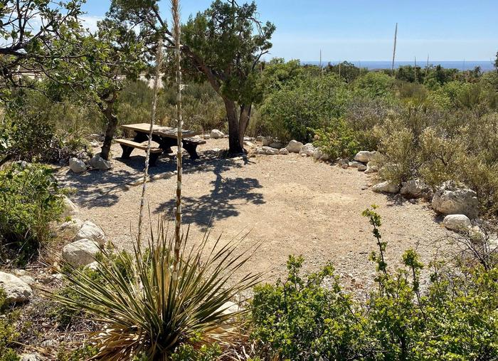 Tent campsite number twelve surrounded by Chihuahuan Desert vegetation.