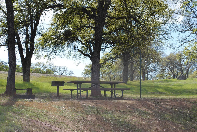 Acorn Campground site 124 picnicPicnic area