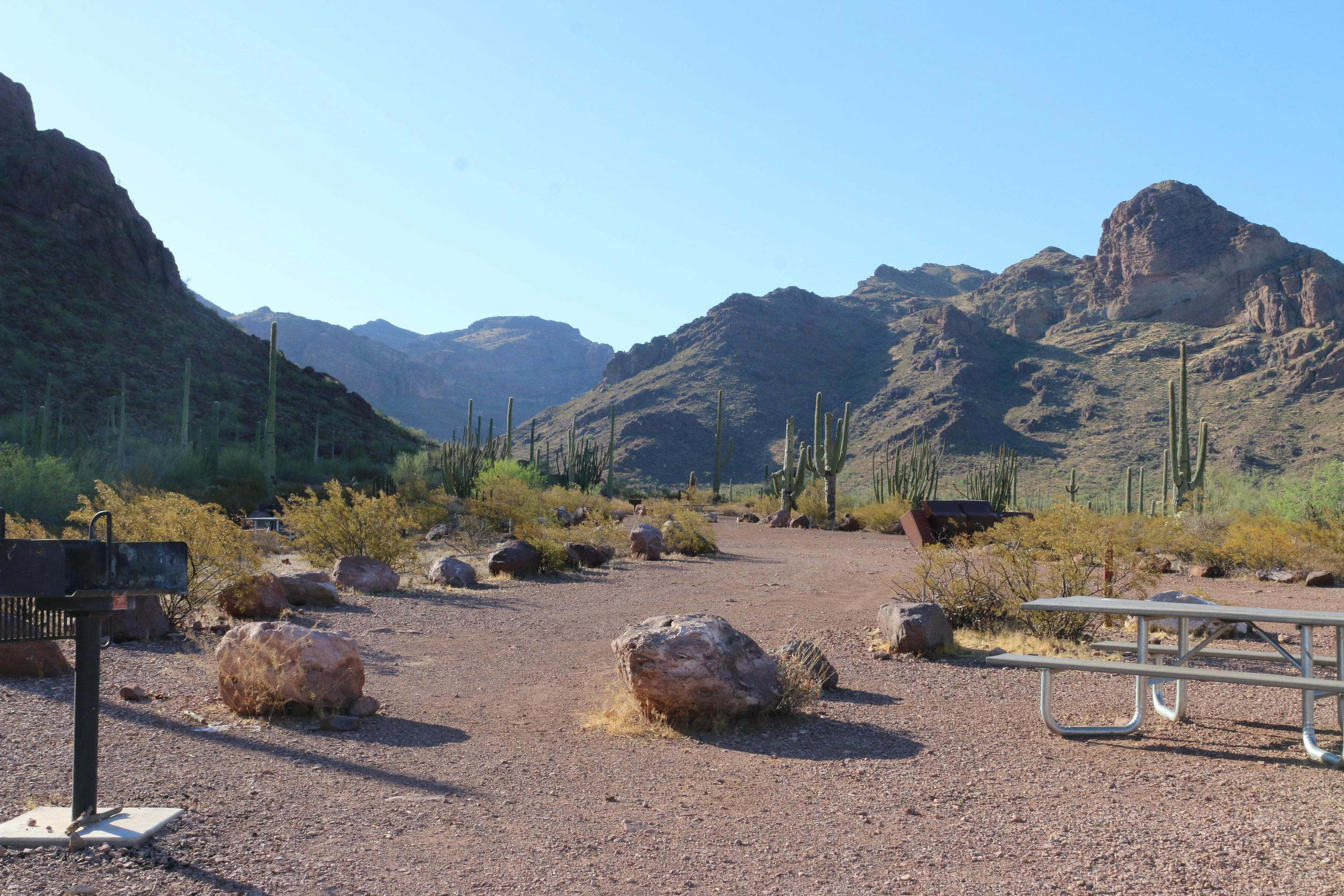 Alamo CampgroundMany visitors seeking seclusion and solitude enjoy the Alamo Canyon campground.