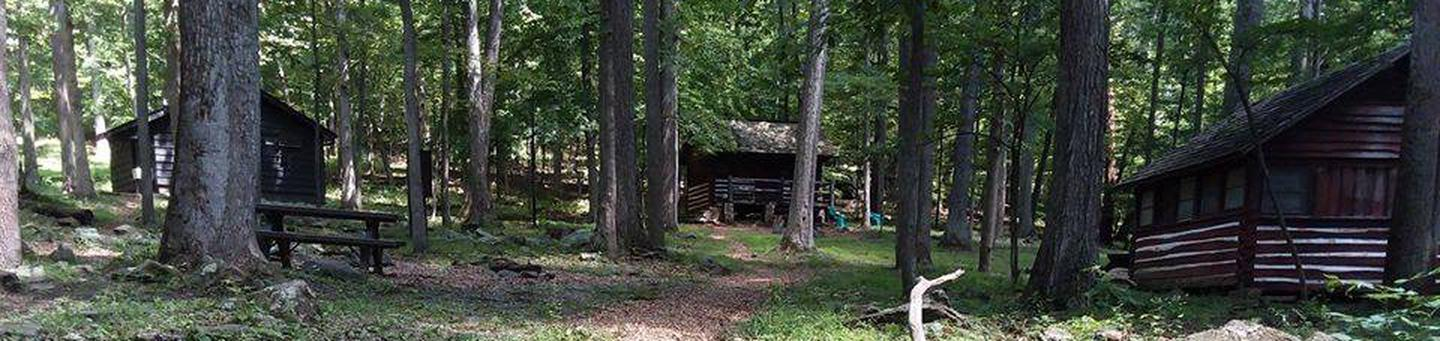 Camp Misty Mount Lower Loop Cabins and Trees