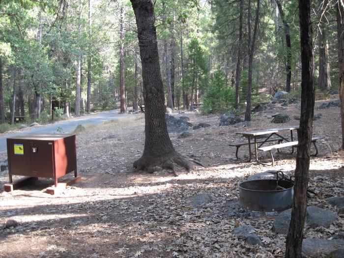 Food locker, picnic table, and fire ringSite 32