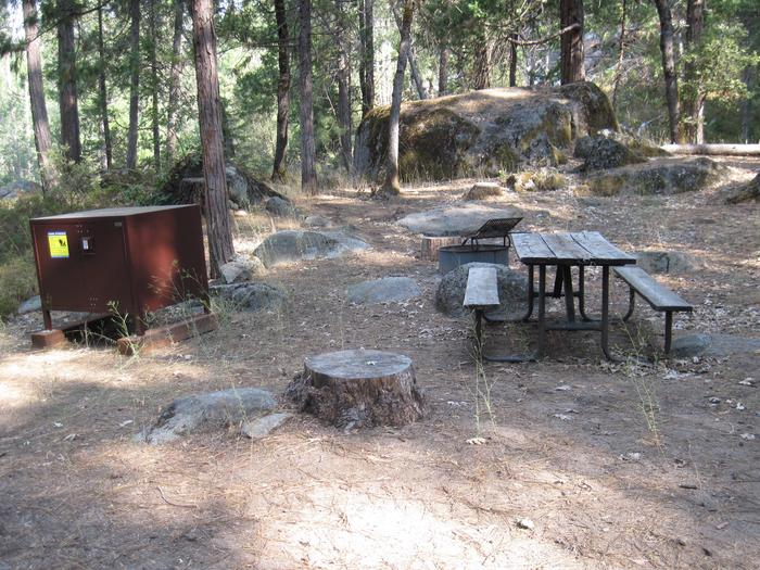 Food locker, picnic table, and fire ringSite 41