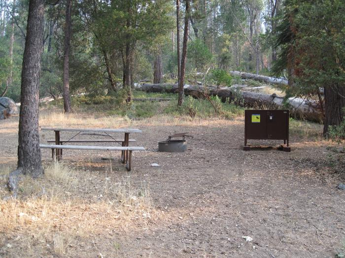 Food locker, picnic table, and fire ringSite 90
