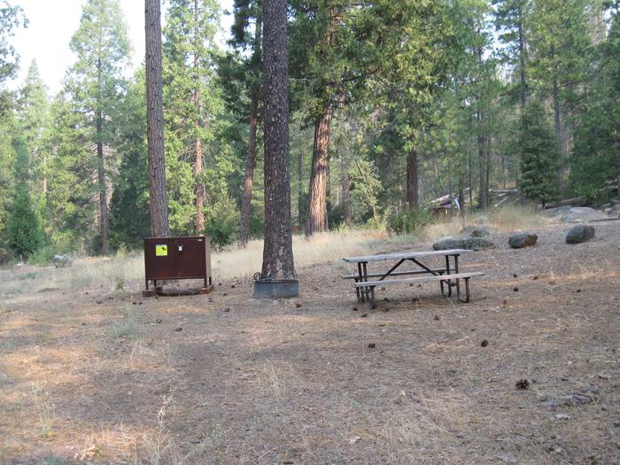 Food locker, picnic table, and fire ringSite 99