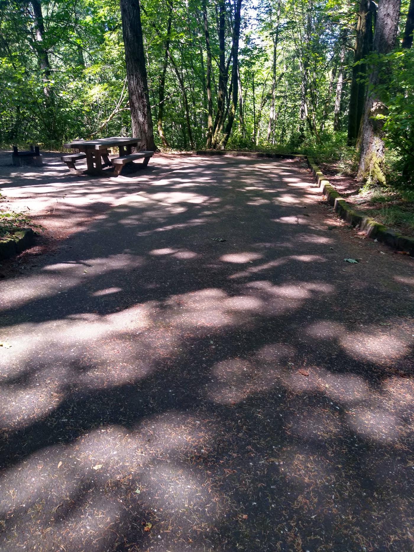 Wyeth Campground Site #2Site #2-Wyeth Campground