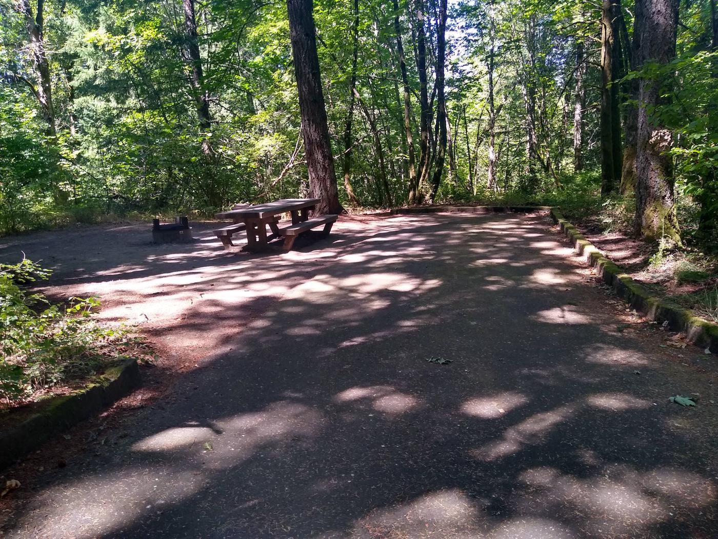 Driveway, Table, and FirepitSite #2-Wyeth Campground