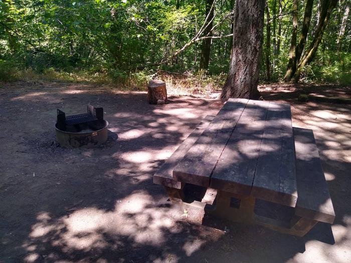 Fire Ring and TableSite #2-Wyeth Campground
