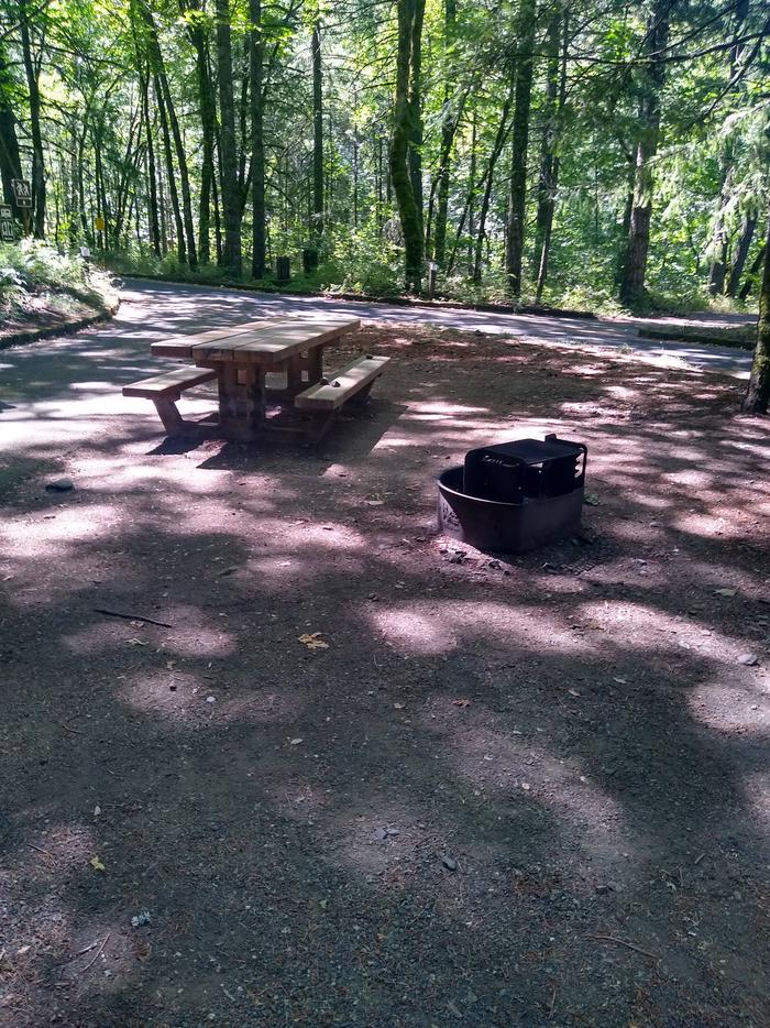 Table and Fire ringSite #3-Wyeth Campground