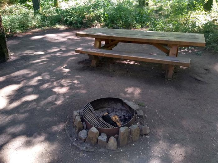 Fire ring and TableSite #4-Wyeth Campground