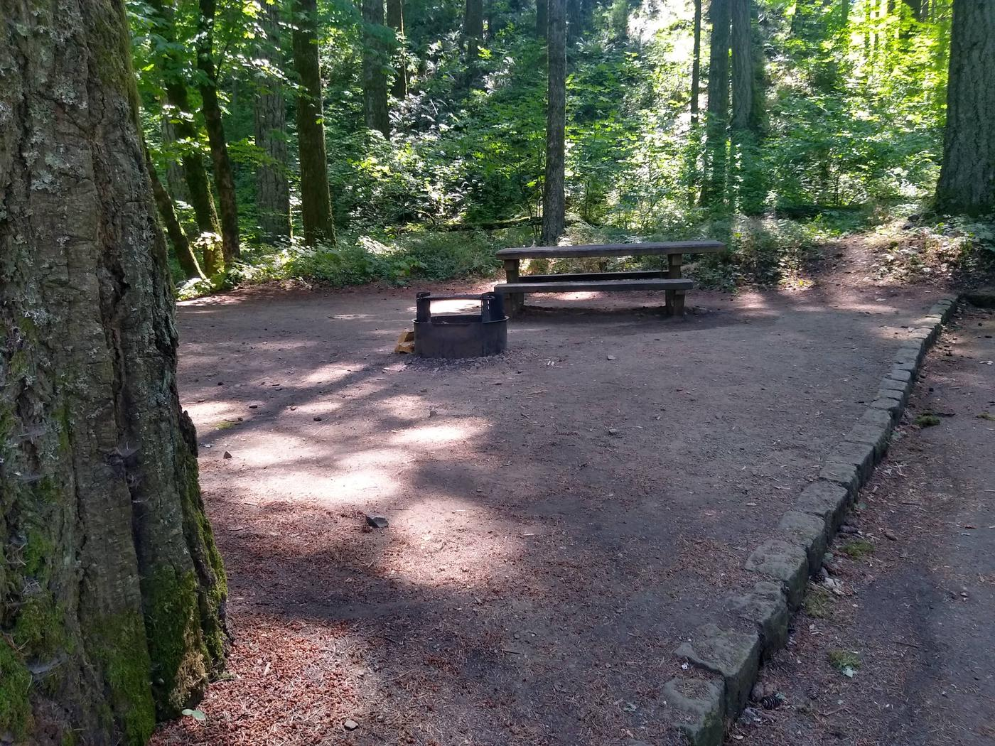 Tentpad, Fire ring, TableSite #8-Wyeth Campground