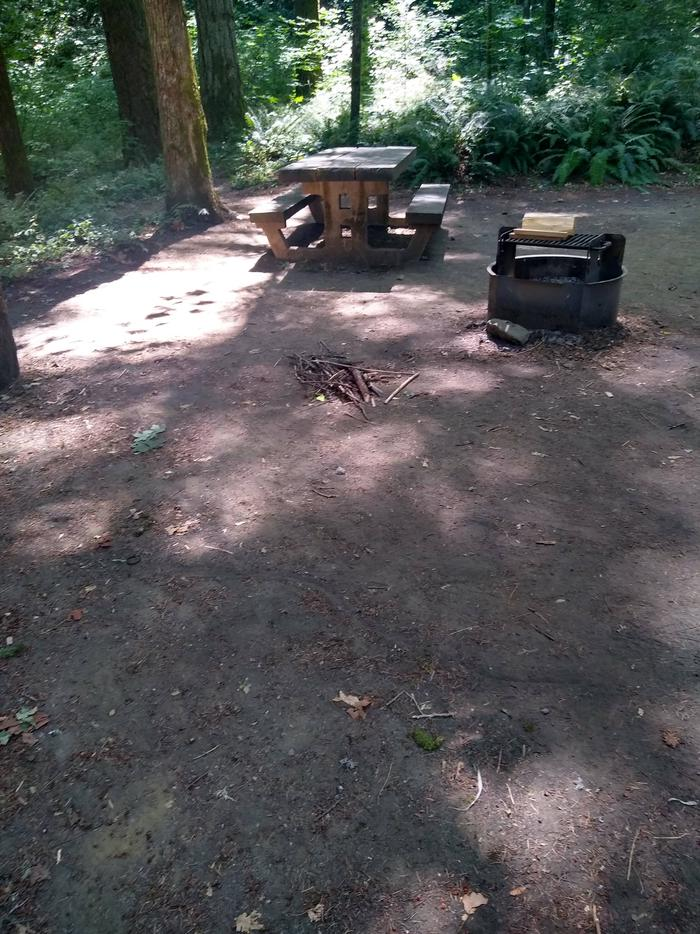 Table and Fire ringSite #9-Wyeth Campground