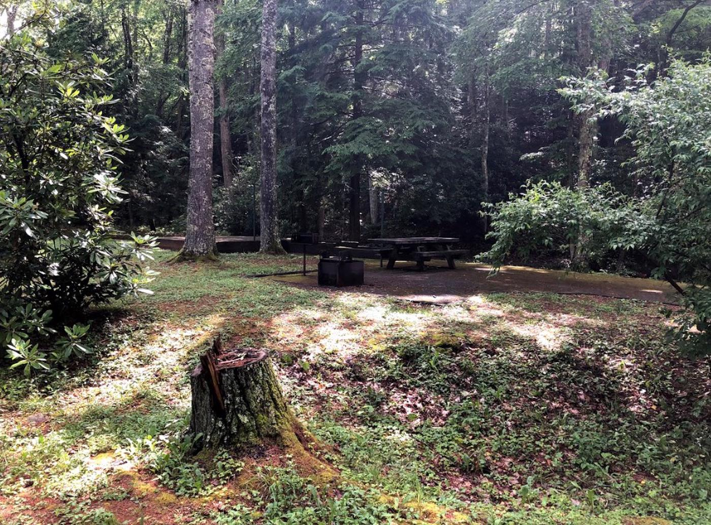 Hurricane Campground 23Views of Hurricane Campground