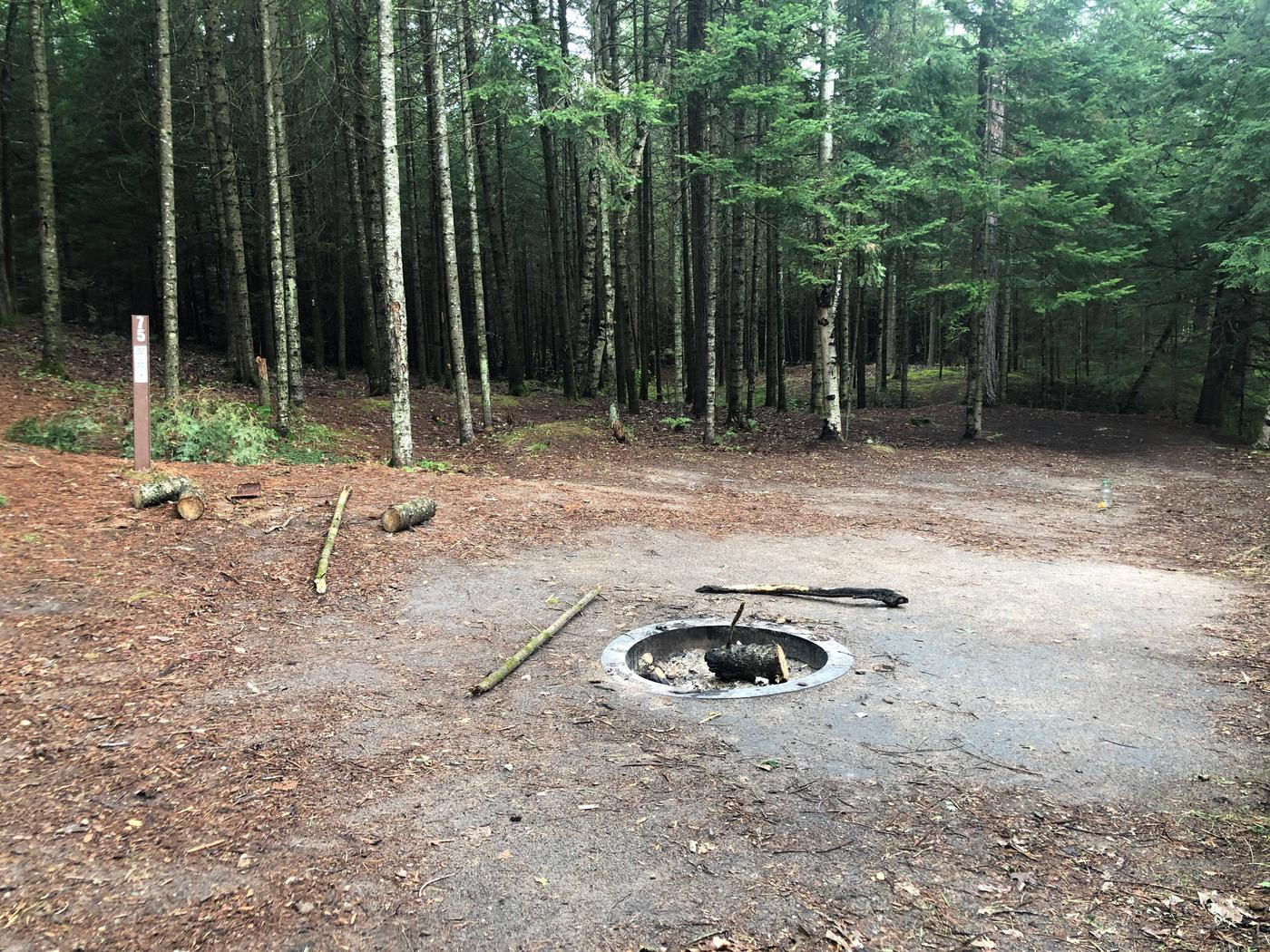 Fire Pit Site 75