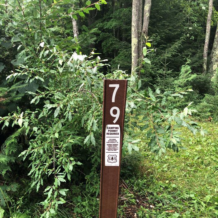 Carsonite Sign site 79