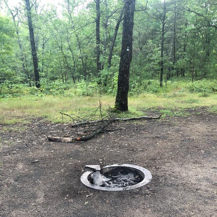 Fire Pit site 102