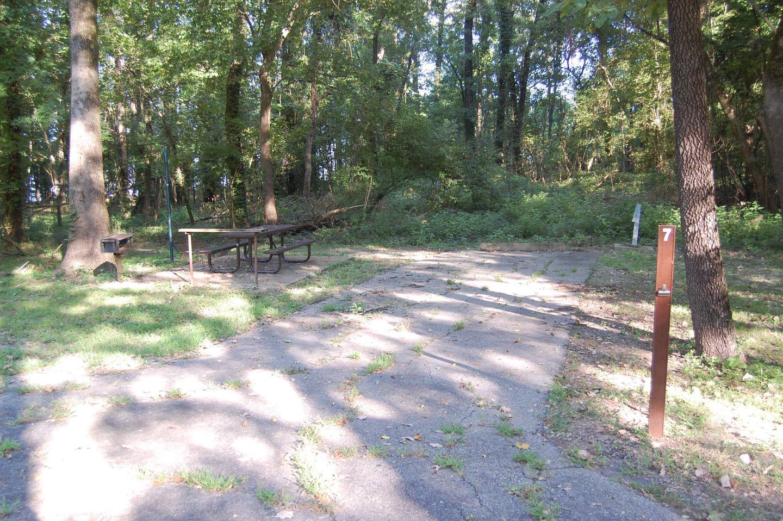 Saratoga Site 7