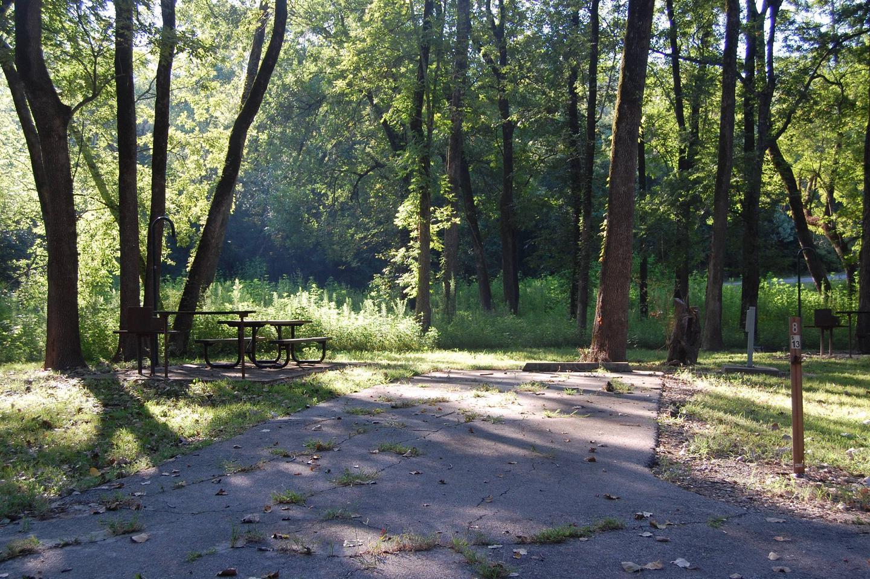 Saratoga Site 8