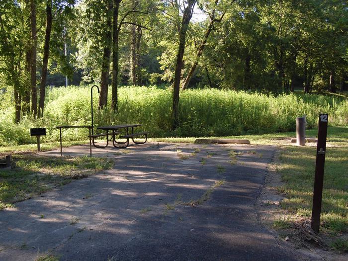 Saratoga Site 12