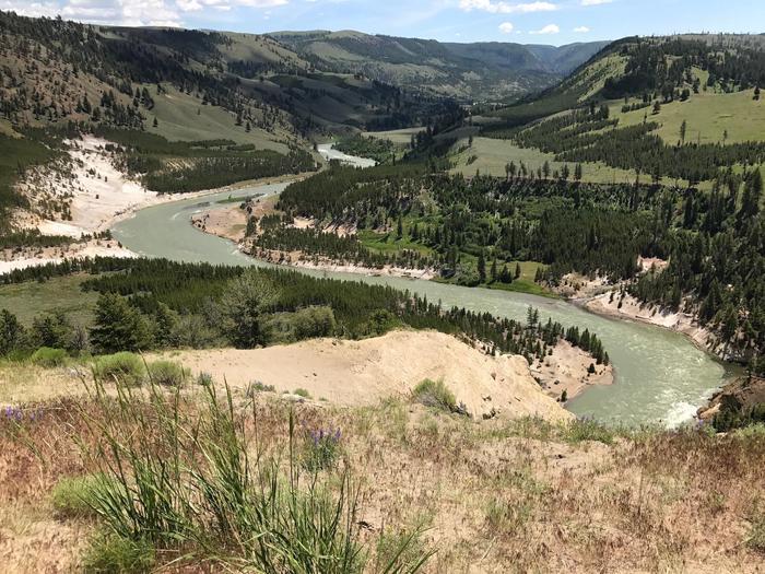 Yellowstone RiverThe Yellowstone River near Tower Fall