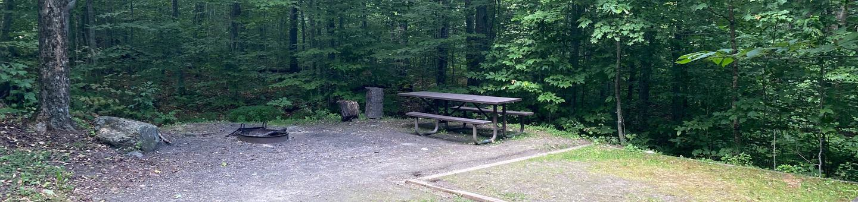 Campsite 7Site 7