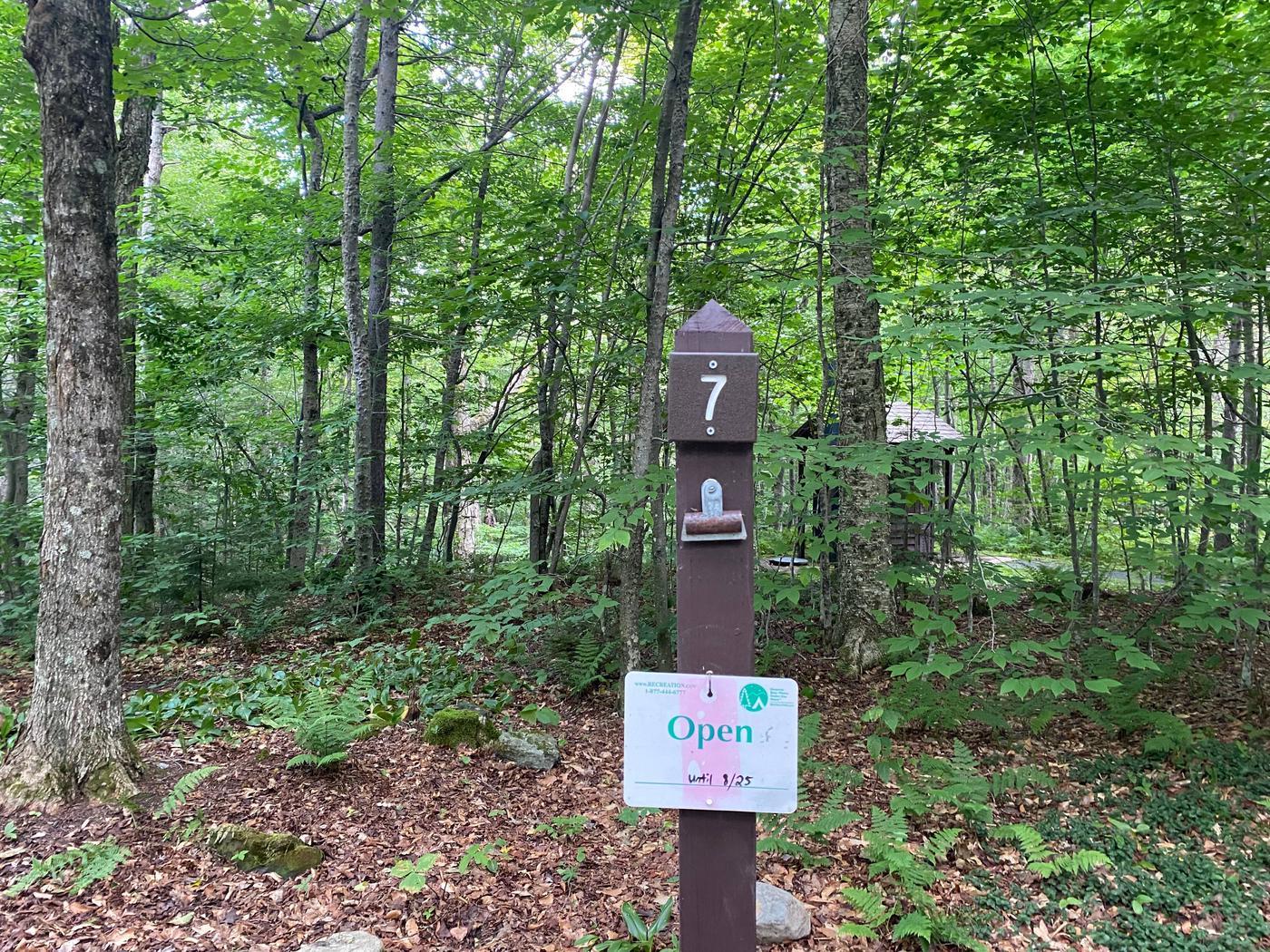 Campsite 7 signSite 7
