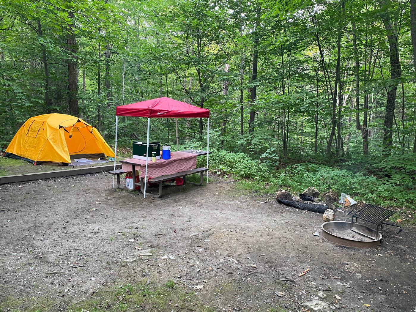 Campsite 9 tent padSite 9