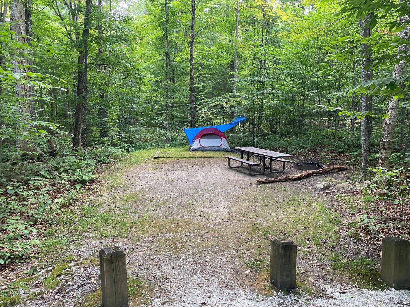 Campsite 10Site 10