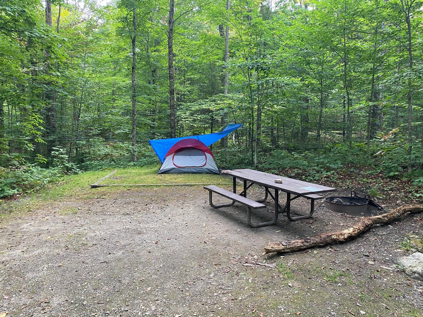 Campsite 10 tent padSite 10