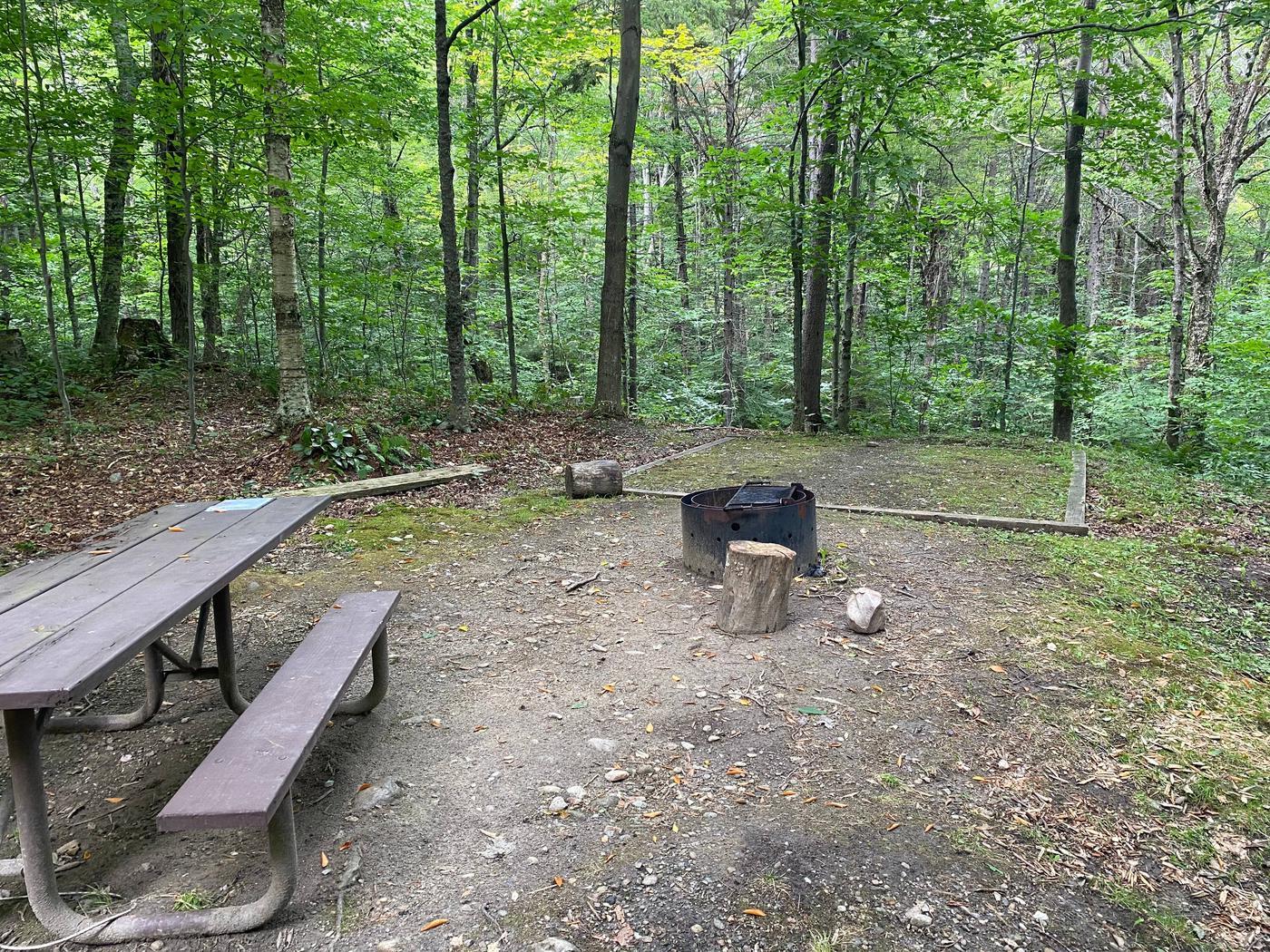Campsite 11 tent padSite 11