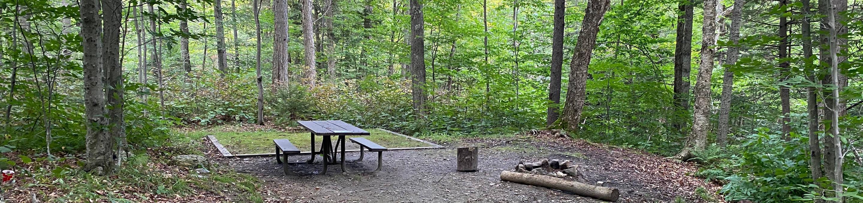 Campsite 12Site 12