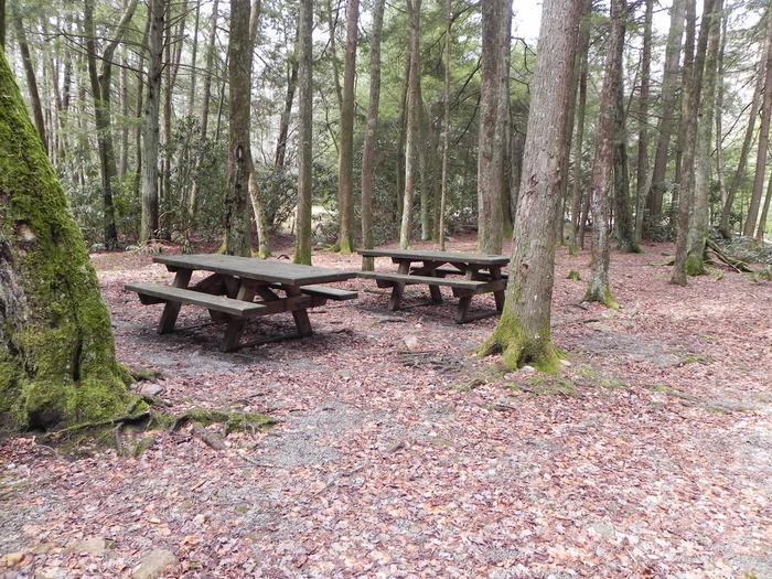 Campsite Campsite 5