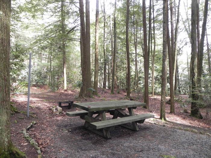 Campsite Campsite
