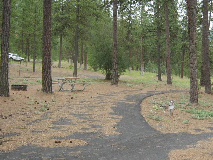 Pull through site, paved with trees in the background.Site #4