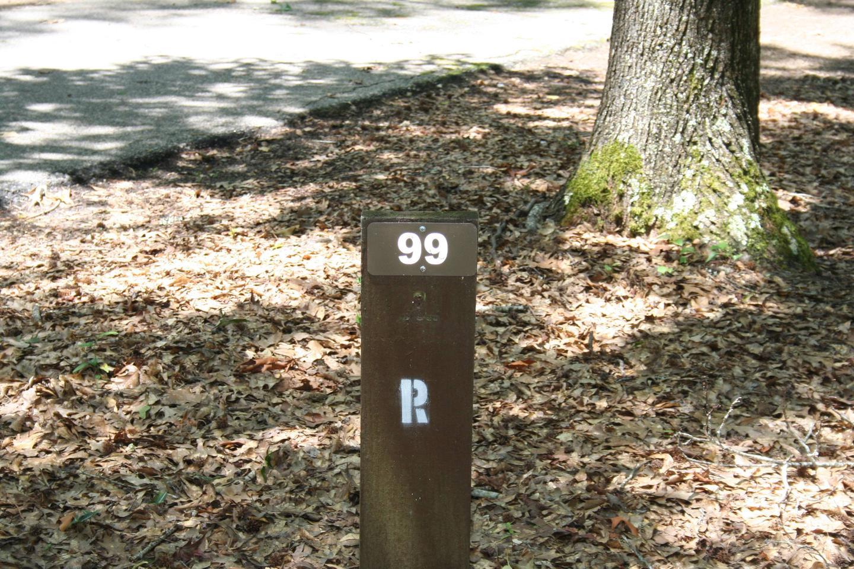 Campsite 99