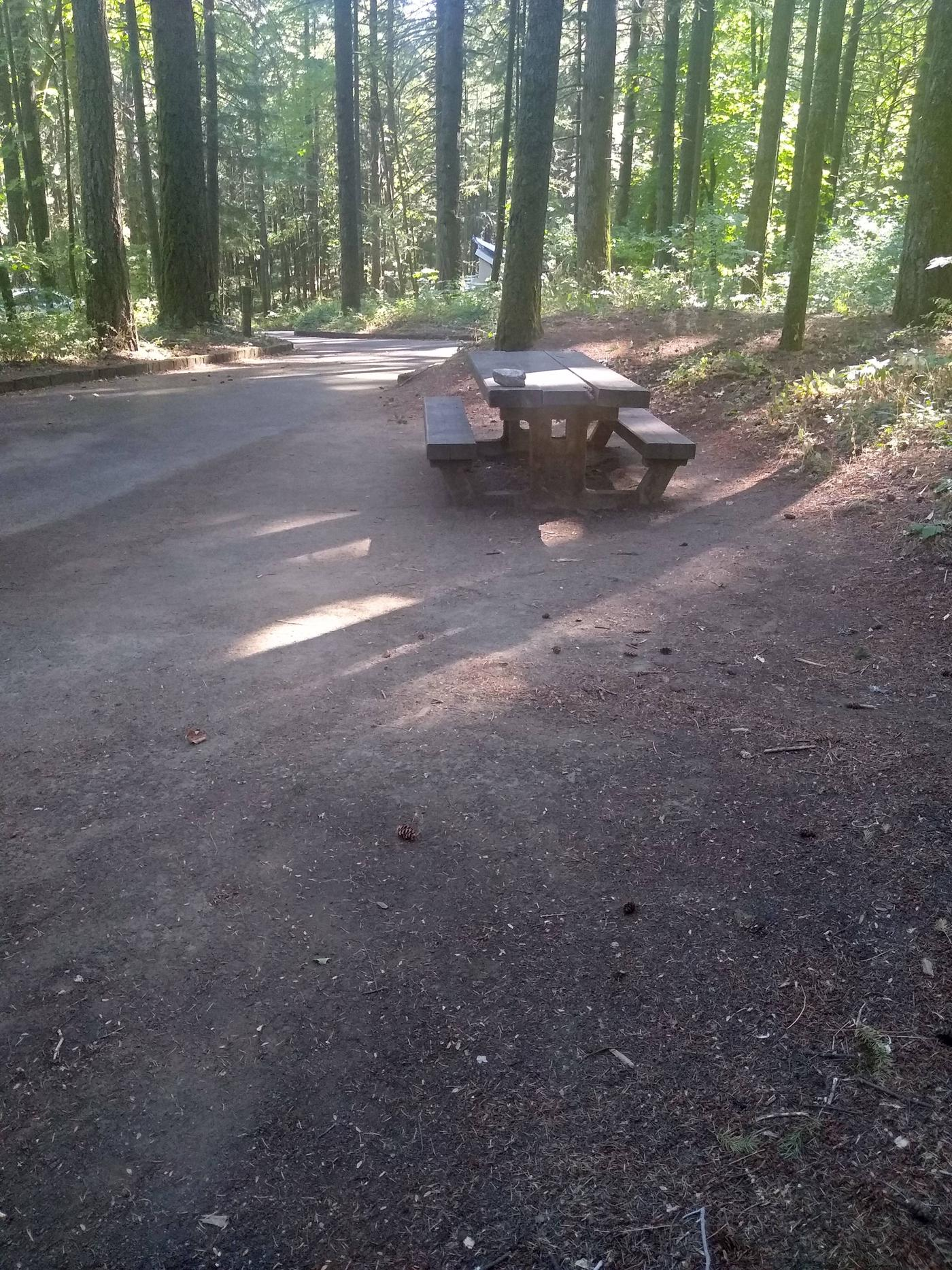 Drive and Picnic TableSite #6-Wyeth C.G.