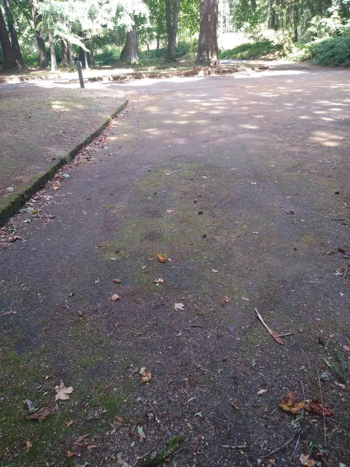 More ParkingGroup Site #2-Wyeth C.G.