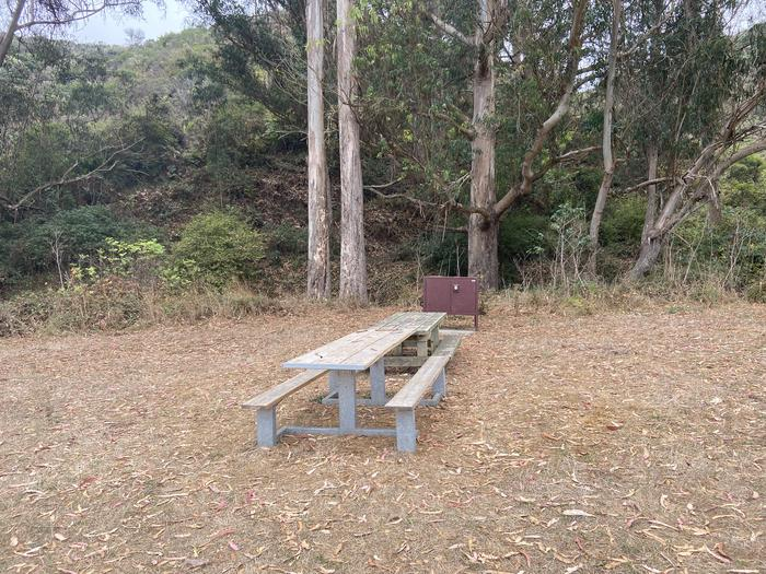 Campsite 2, with a food locker and two picnic tables.Campsite 2