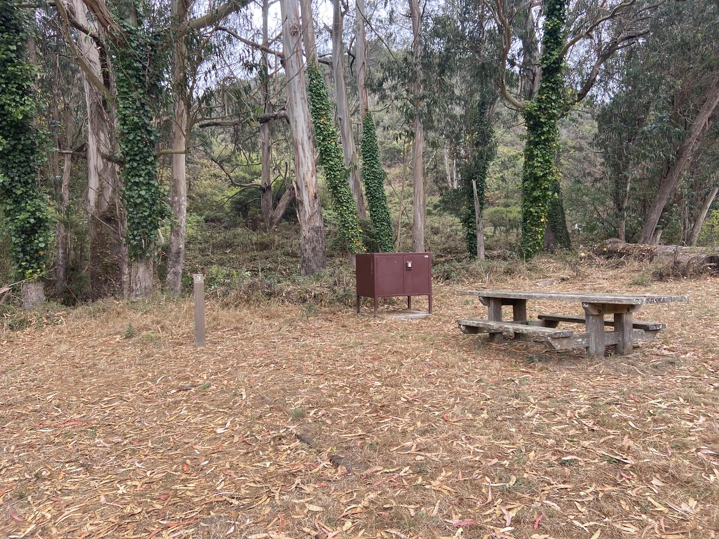 Campsite 3, with a food locker, a tent pad, and one picnic table.Campsite 3