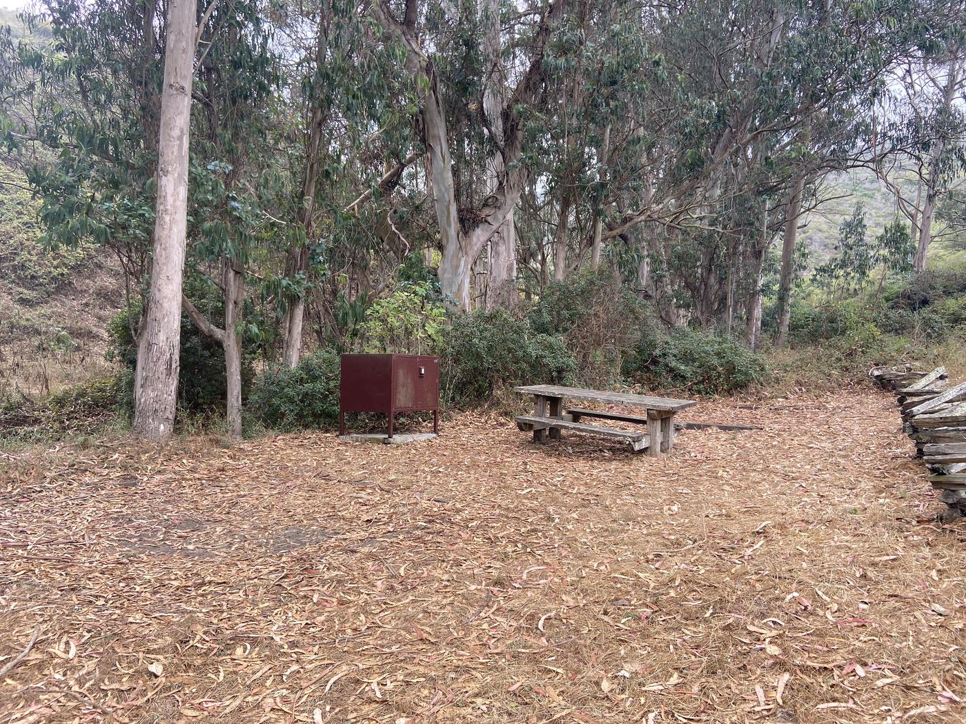 Campsite 5, with a food locker, a picnic table, and two tent padsCampsite 5