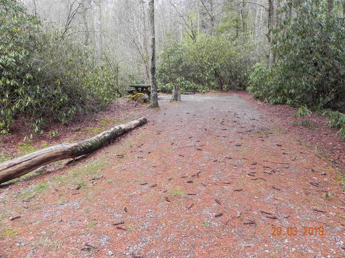 Campsite Campsite + Driveway