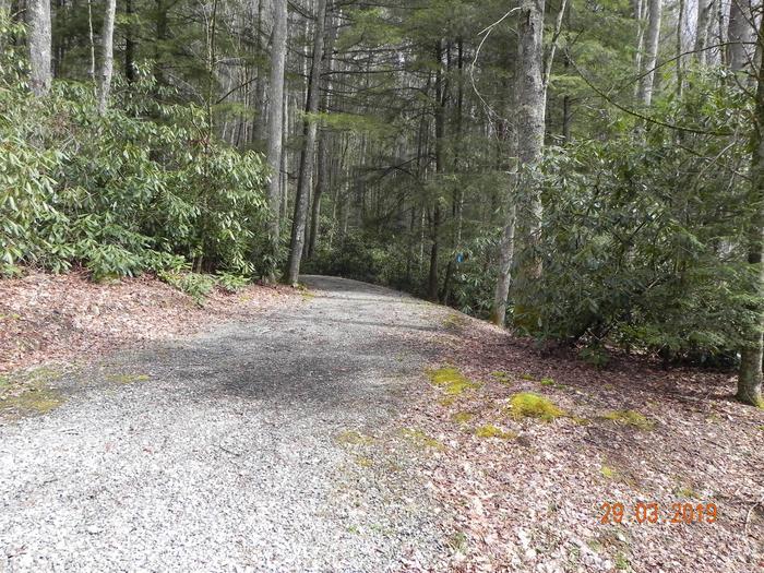 Driveway into campsite