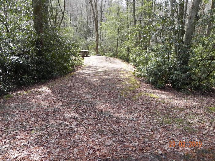 CampsiteCampsite Driveway